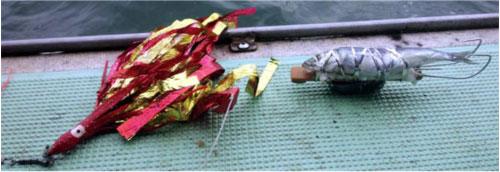 タカ産業レポート写真
